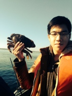 David Crab