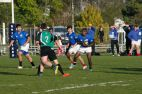 rugby16