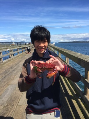 Pine Crab